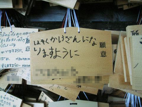 hobby_20081030a