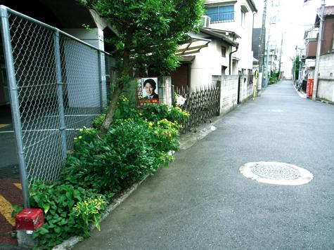 hobby_20100926m